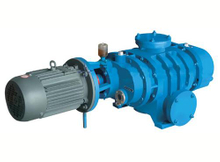 ZJ Roots Vacuum Pump